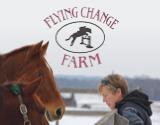FlyingChangeFarm